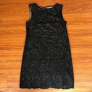 Ann Taylor Loft sz 6 cute shift dress